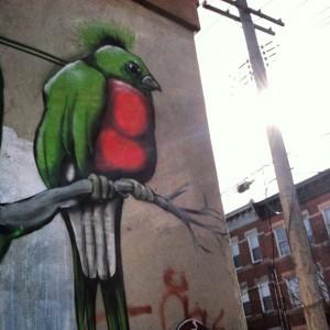 Bird-Sun